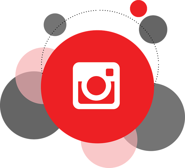 Growing Your Instagram Account: A Primer.
